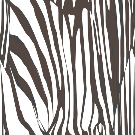 Zebra skin closeup illustration, hand drawn seamless pattern  Vector