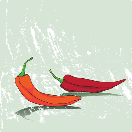 Hand drawn cartoon illustration representing two peppers on a grungy faded green background Vector