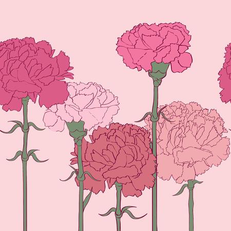 claveles: Claveles rosados ??patr�n lineal a lo largo, dibujado a mano ilustraci�n de dibujos animados con flores hermosas Vectores