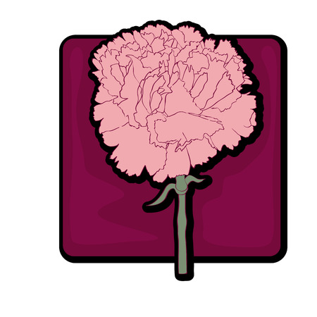 Carnation clip art, hand drawn illustration of a flower over a dark red background isolated on white Vector