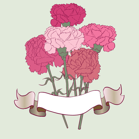 Greetings card with carnations, hand drawn illustration of a flowers bouquet over a light green background Illustration