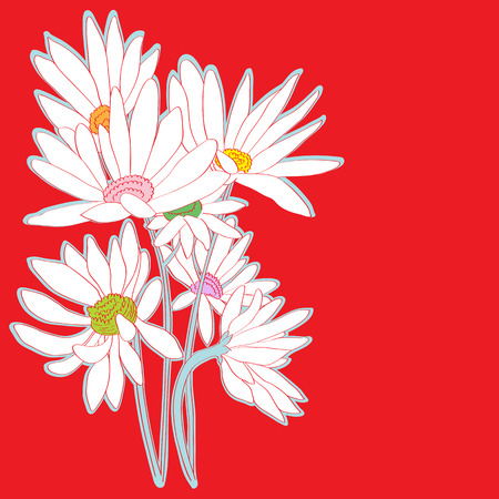 Hand drawn illustration of a greeting card with daisies, sticker over a red background Illustration
