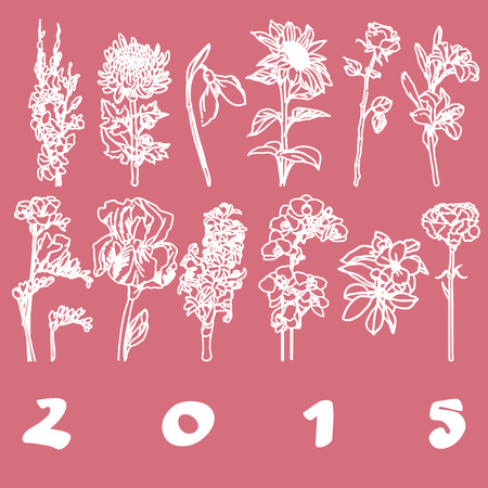 Calendar 2015 cover with hand drawn flowers illustrations for each month, pink stencil over white Vector