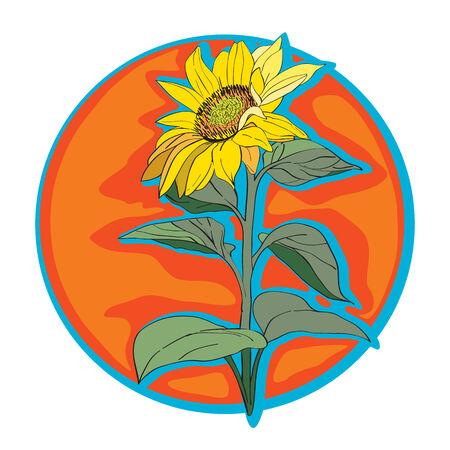 Sunflower clip art, hand drawn cartoon illustration isolated on white Vector