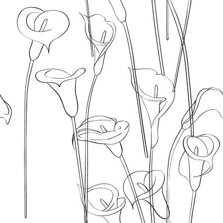 asymmetrical: Calla asymmetrical sketch pattern, celebration invitation card on a white background
