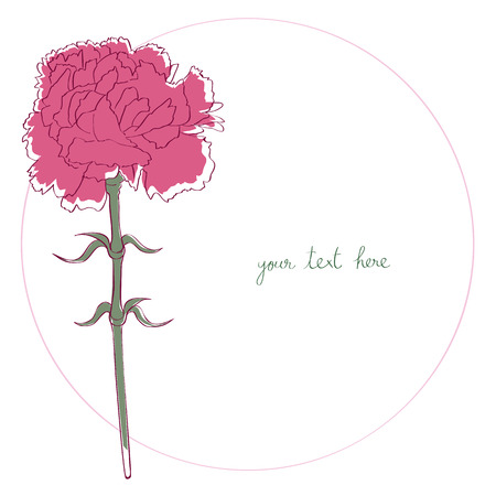 Carnation card illustration, one element composition with simple frame over white