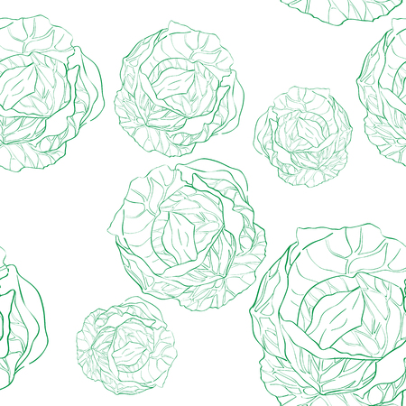 agriculture wallpaper: Cabbage seamless pattern, doodle illustration of multiple vegetables isolated on white Illustration