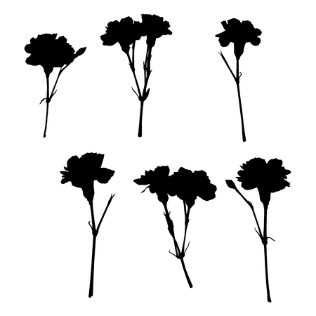 six objects: Carnation silhouettes, six objects isolated on white