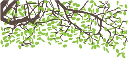 Tree branches card illustration, elements isolated on white