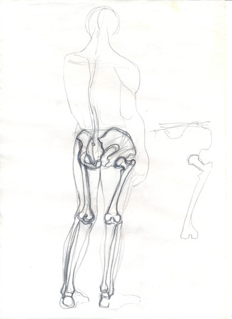 Hand drawn illustration of a part of the human skeleton, the bones of the legs and pelvis, original artistic pencil sketch of a human silhouette over an obsolete paper with spots, back view Stock Photo