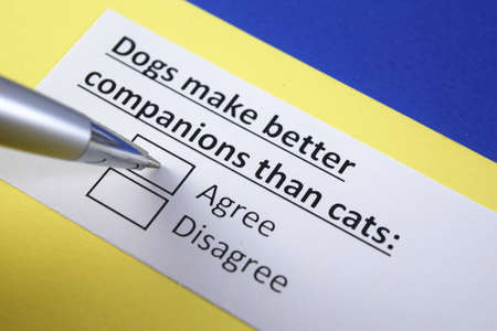 Dog make better companions than cats: Agree or disagree?