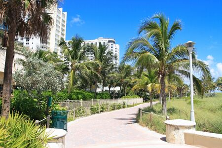 Tropical walkway to south beach Imagens