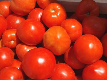 Tomatoes in baskets at the farm stand