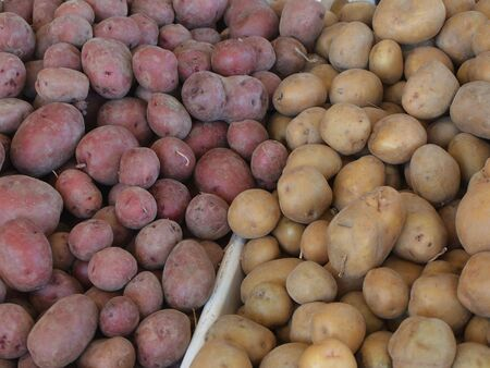 Racks of Long Island potatoes at a road side stand Imagens