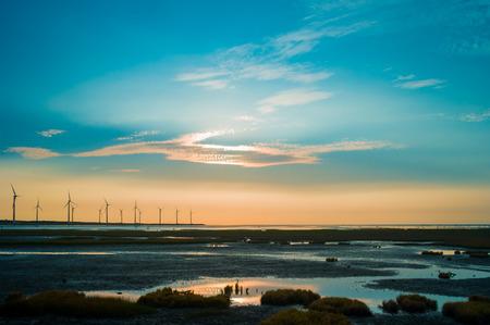 wetland: sillouette of Wind turbine array at seashore wetland