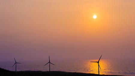sillouette: sillouette of Wind turbine array at seashore wetland