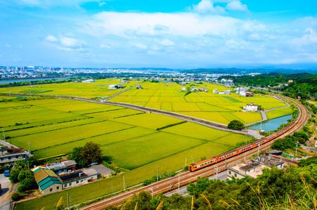 Champ de riz dans Miaoli, Taiwan Banque d'images - 48353017