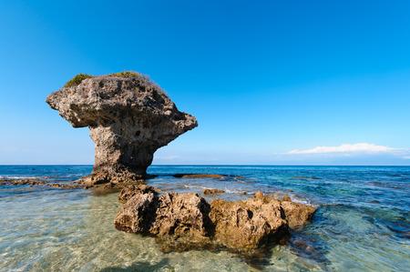 pristine coral reef: Flower Vase Coral Rock with blue sky