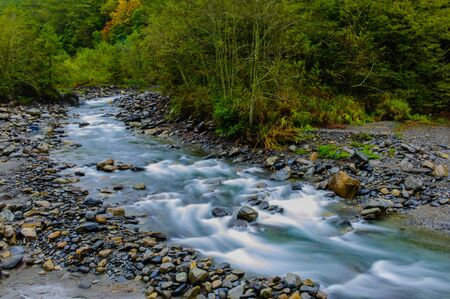 gold rush: rushing river in a mountain forest