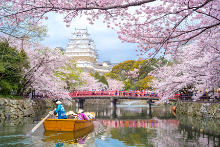 Himeji Castle with beautiful cherry blossom in spring season Redactioneel