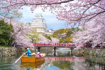 Zamek Himeji z pięknym wiśniowy kwiat w sezonie wiosennym Publikacyjne