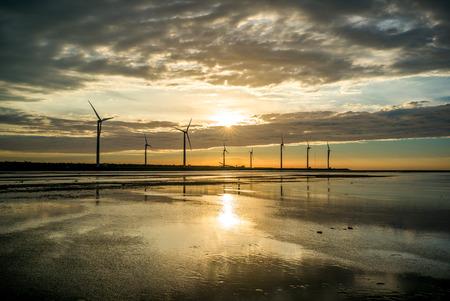 wetland: sillouette of Wind turbine array at Gaomei Wetlands