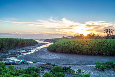 Sunset at the Mangrove forest in Hsinchu, Taiwan