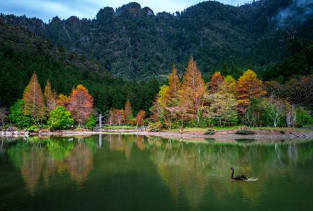mingchi forest recreation area in yilan, taiwan