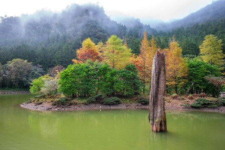 recreation area: mingchi forest recreation area in yilan, taiwan