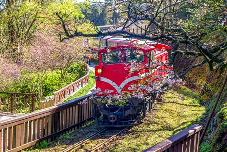 Ferrocarril en el área de recreación del bosque alishan en chiayi Foto de archivo - 76602902