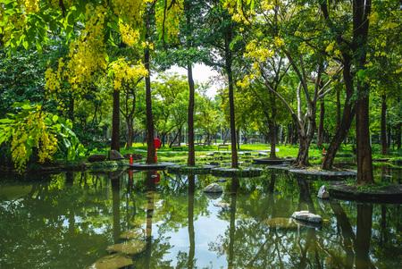 scenery of dadong wetland park, kaohsiung, taiwan Reklamní fotografie