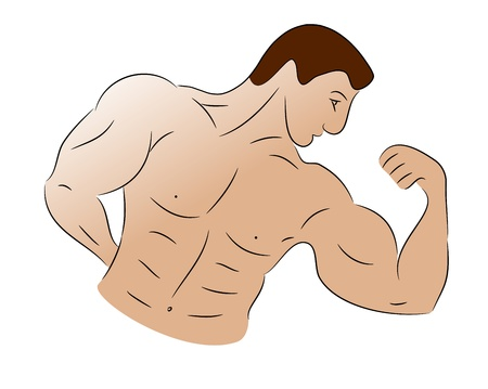 Freehand sketch of a bodybuilder flexing his bicep muscles Stock Photo - 16481268