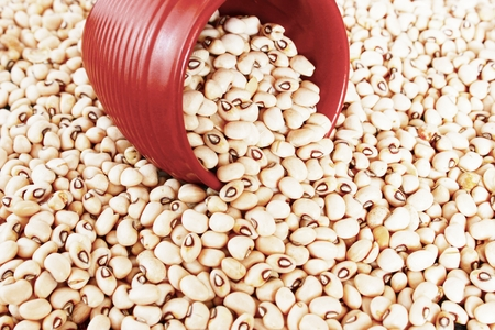 protein source: Black eyed peas or beans are a vegetarian  protein source. These belong to the legumes family. The photo includes a terracotta measuring cup amidst the beans.
