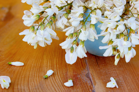 White Wisteria flowers which bloom during springtime, hanging from a ceramic vase onto the wooden board underneath. This Still life image can be used for nature, springtime and floral concepts. Stock Photo