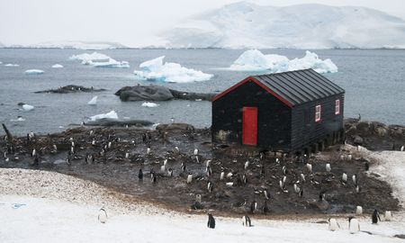 polar station: Port Lockroy research station - Antarctica Stock Photo