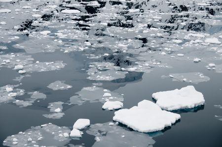 brash: Brash ice in Neko Harbor - Antarctica