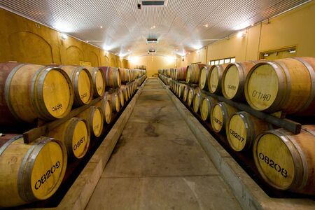 View of rows of wine barrels at a winery cellar.  photo