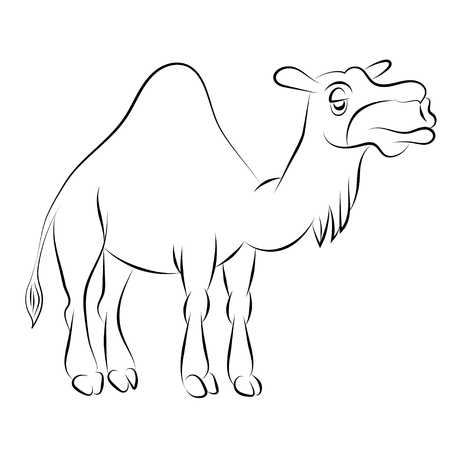 Illustration of the chewing camel with one hump drawn with a contour Illustration
