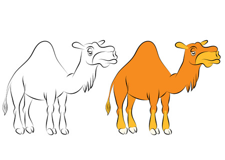 bikaner: Illustration of the chewing orange camel with one hump Illustration