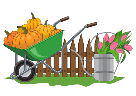 Vector illustration of the composition of the garden fence, watering can with tulips and wheelbarrow with yellow pumpkins Stock Illustratie