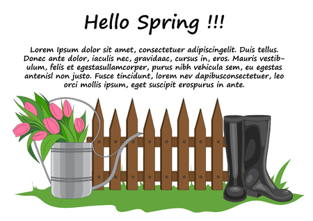 tulips in green grass: Vector illustration of the composition of the garden fence, watering can with tulips and black boots standing in the green spring grass
