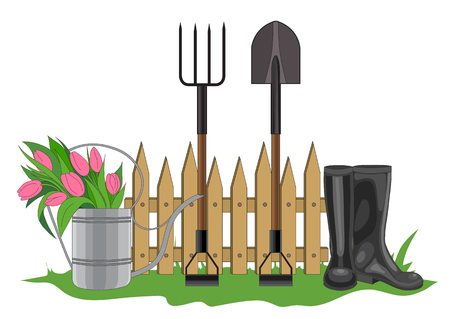 tulips in green grass: Vector illustration of the composition of the garden fence, watering can with tulips, black boots, pitchfork and shovel standing in the green spring grass