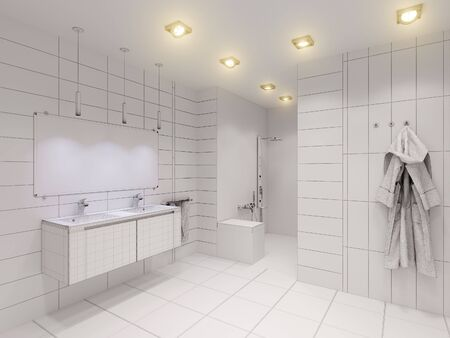 bathroom tiles: 3D render of the bathroom without color and textures. Interior design of a bathroom is depicted in the polygon mesh Stock Photo