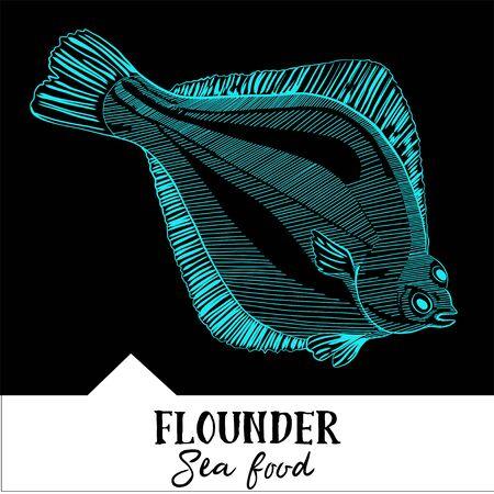 fluke: Vector illustration flounder for a seafood menu Illustration