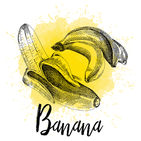 Vector illustration of a banana in hand drawn graphics. The fruit is depicted on a yellow watercolor background. Design for packaging Illustration