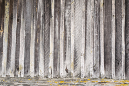 The texture of the old fence of wooden planks covered with moss 版權商用圖片