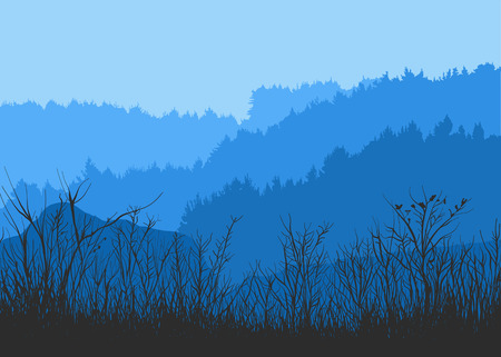 Vector illustration of a forest panorama. Silhouette of spruce and pine. Landscape of coniferous trees. Detailed forest background