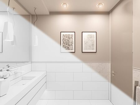 3D render, interior of the toilet in a private cottage. Toilet interior design illustration in traditional modern american style. Bathroom design in white color