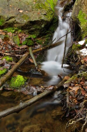 Amazing stream detail with branches and mossy rock. photo