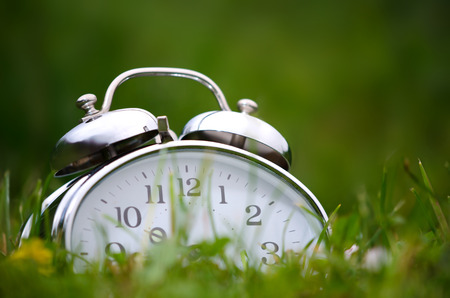 day time: Old metal alarm clock among grass and flowers.